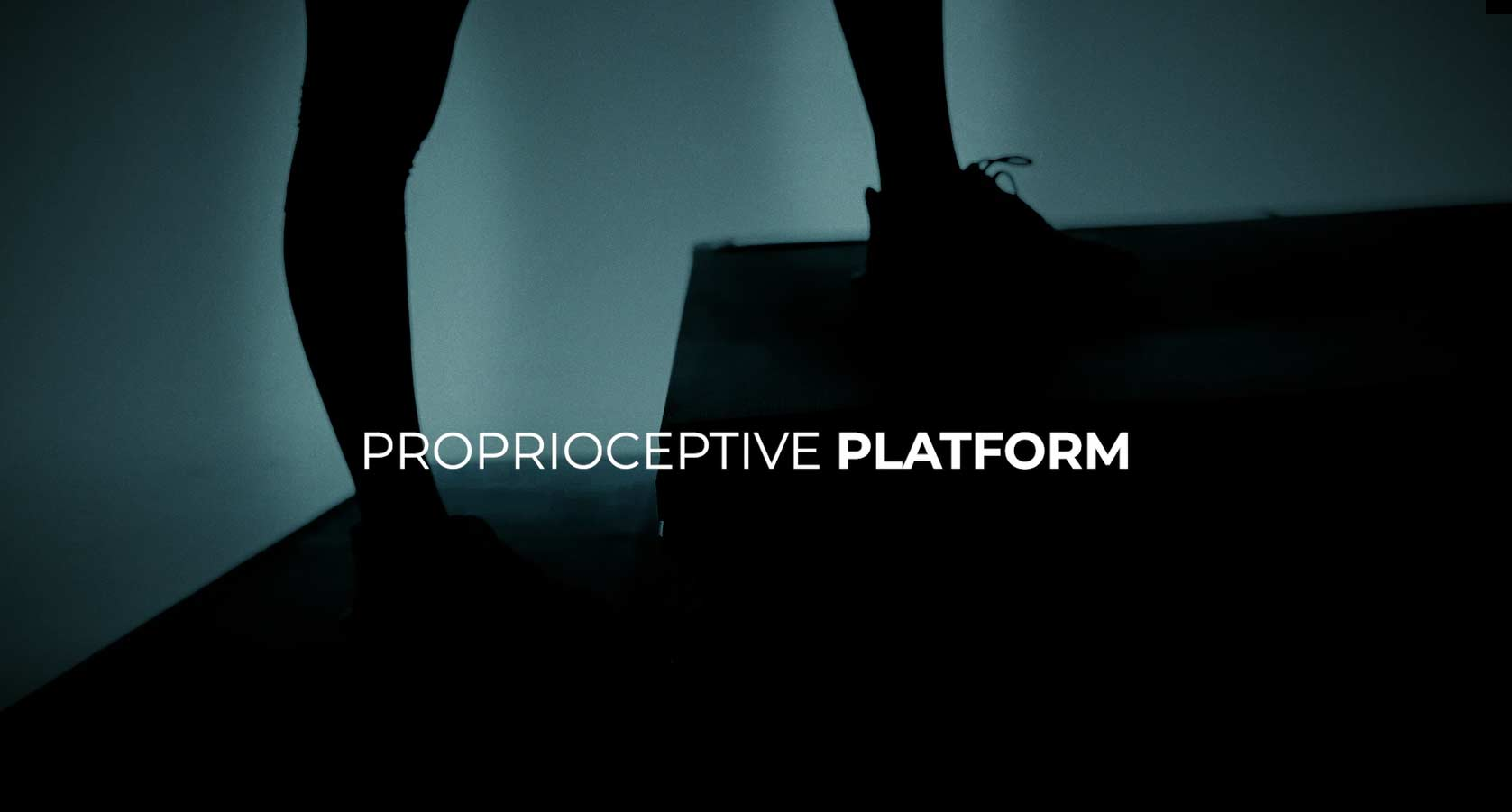Proprioceptive Platform